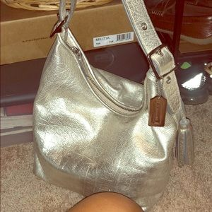 Metallic Coach Purse